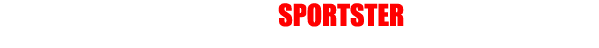 HARLEY-DAVIDSON SPORTSTER CUSTOM GALLERY - ハーレーダビットソン スポーツスターモデル カスタム